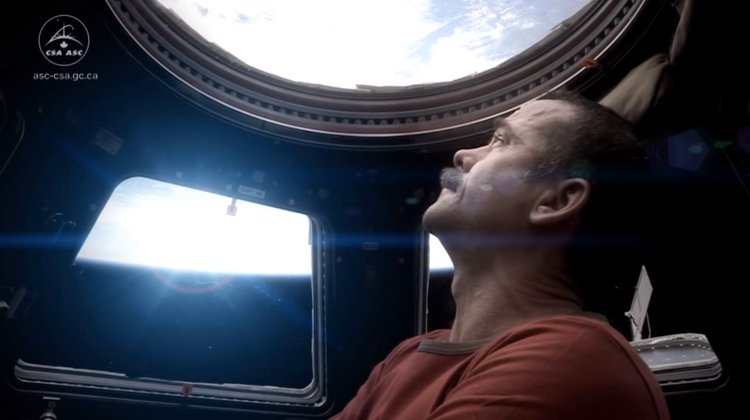 Chris Hadfield Looking Into Space