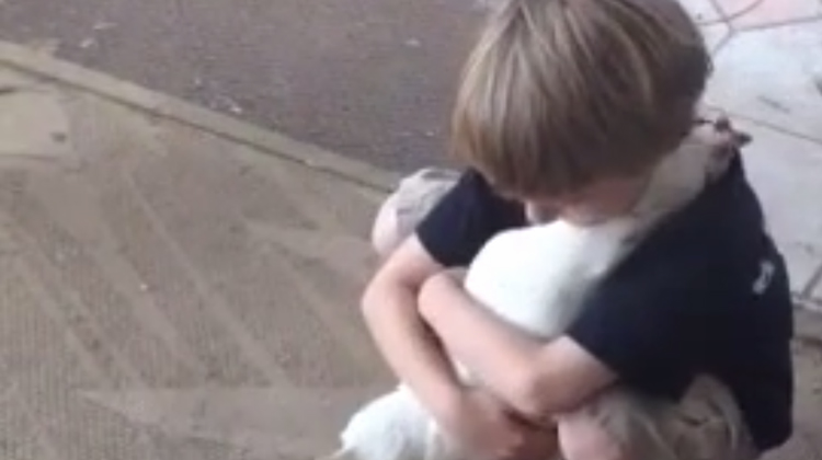 Kid-hugging-Chicken