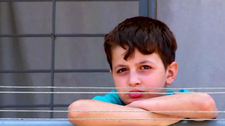 Boy-Looking-At-Camera