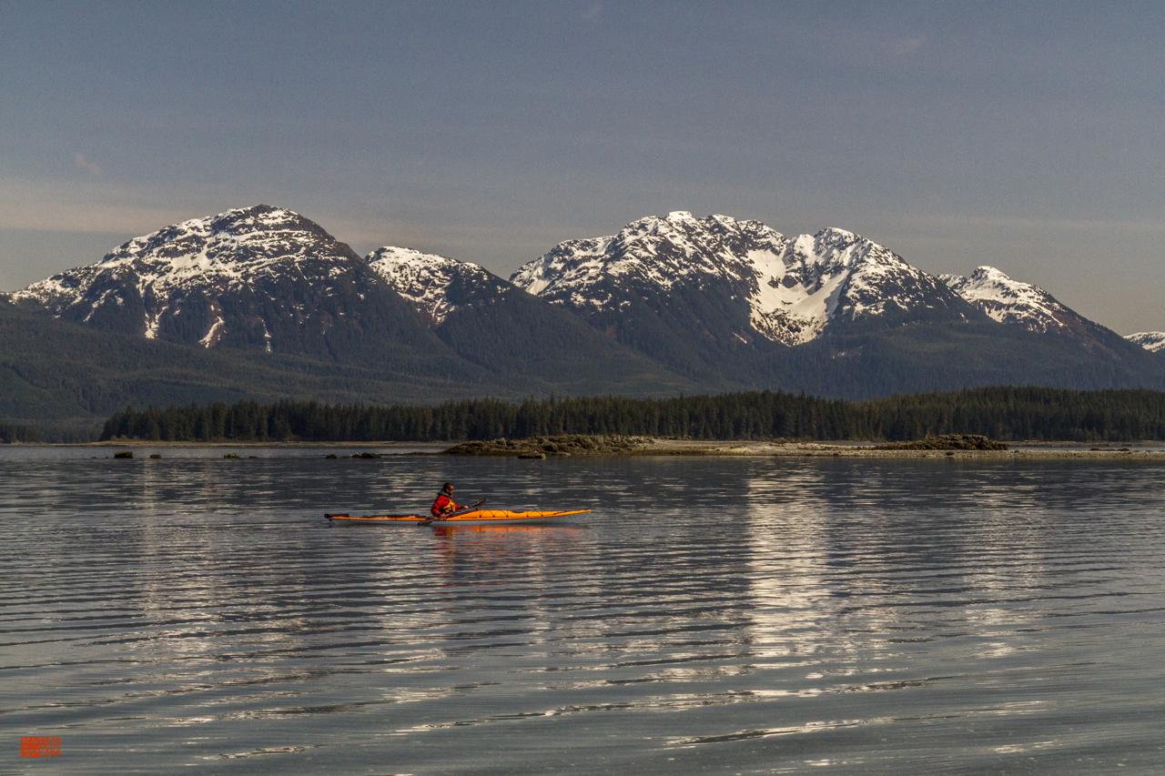 Daniel Fox kayaking through nature
