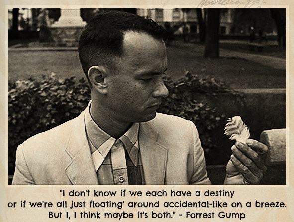 10 Forrest Gump Quotes That Are Ridiculously Brilliant.