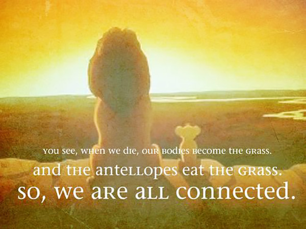 All creatures are connected in the great circle of life