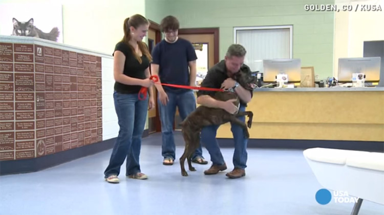 Boozer puppy reunited with family
