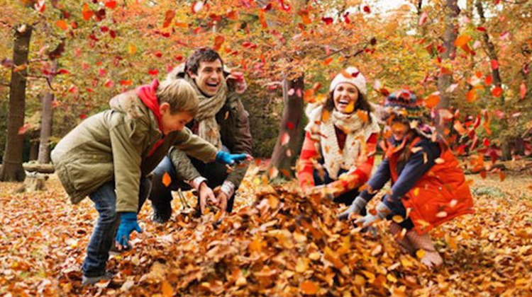 """13 Creative Autumn Activities That Will """"Leaf"""" You Excited"""