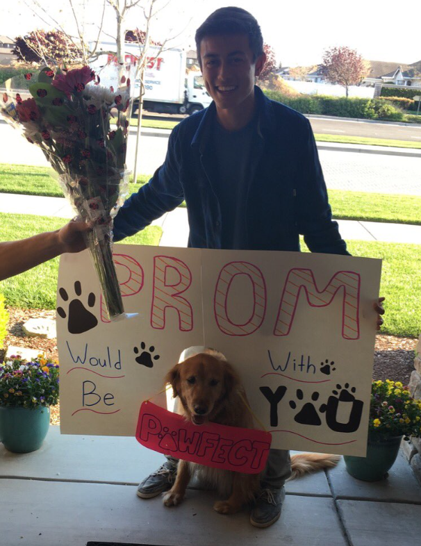 17 Hilarious Promposals Youd Be Crazy To Reject Page 11 Of 17