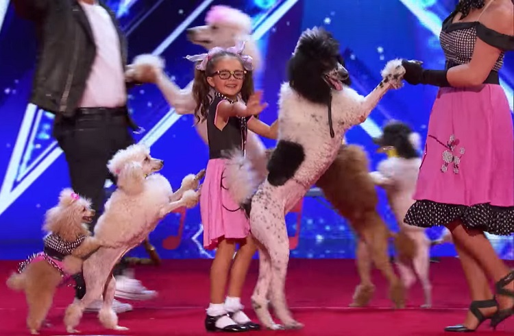 The Pompeyo family recently wowed judges and the audience with their 1950s act involving five very talented poodles.