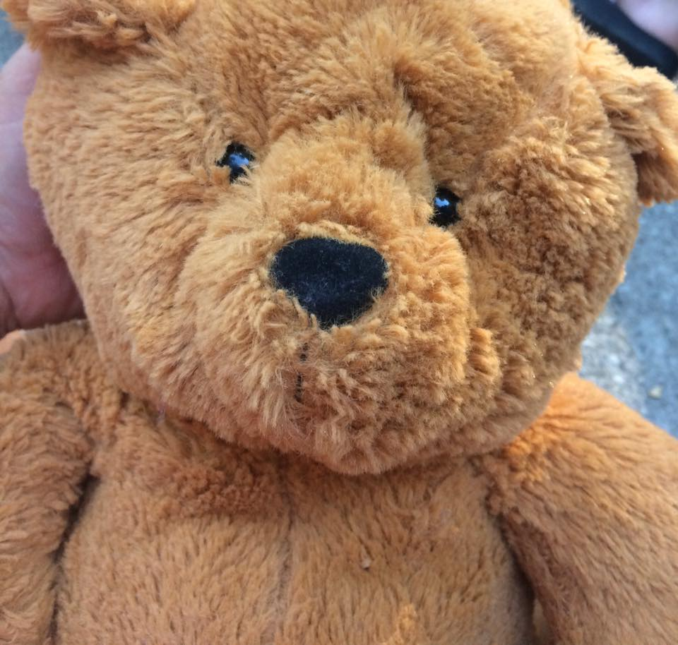 Military Daughter Finds Bear At Goodwill, When She Hears What's Inside, She Knows She Can't Keep It.