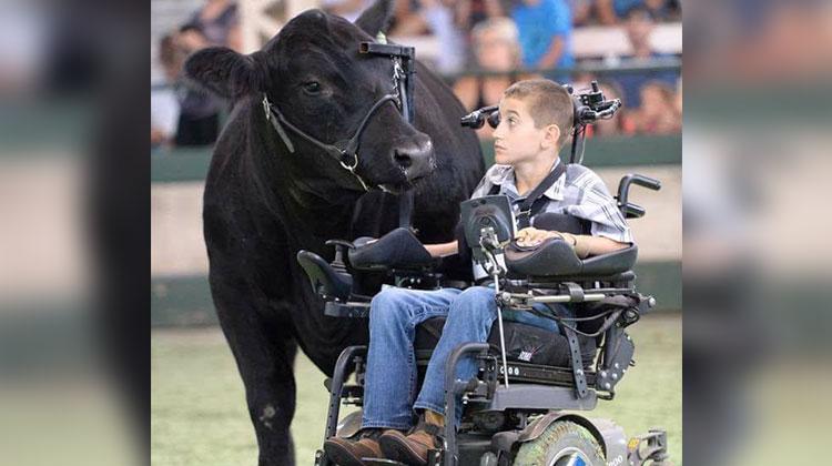 alec gotto cow whisperer