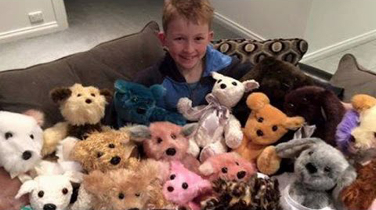 12-Yr-Old Boy Hand Sews 800 Teddy Bears, Melts Hearts With ...