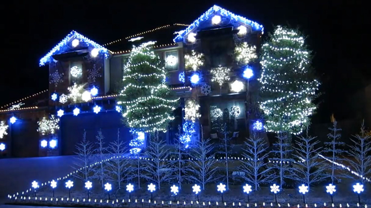 white and blue lights on house and trees