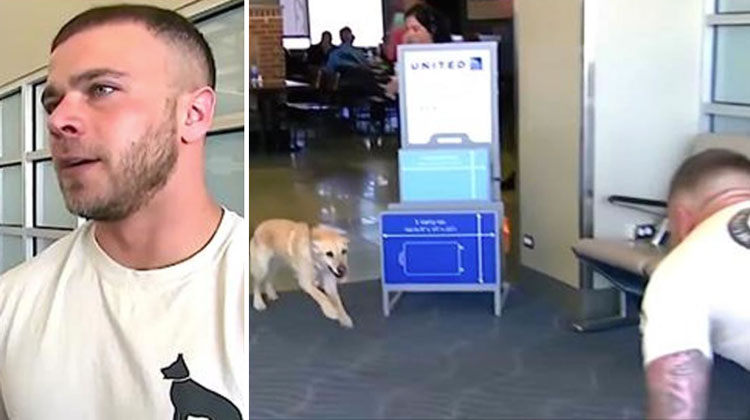 Soldier Waits Nervously At Airport, When Dog Runs Towards Him He Drops To The Floor