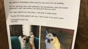 A woman who just moved into an apartment complex in Pittsburgh knows her neighbors are going to be annoyed with her howling dog, so she posted a note explaining why Charleston Chew howls to head off complaints. Not surprisingly, someone took a pic of the photo and it's gone viral.