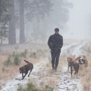 lee and dogs in snow