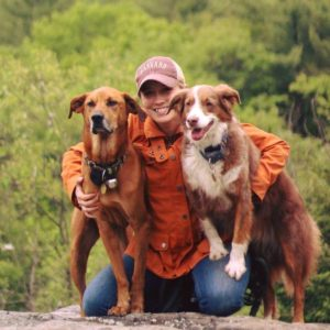 amber and dogs