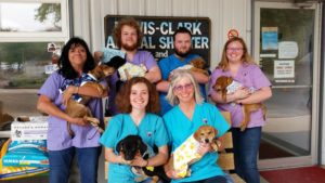 shelter staff and puppies