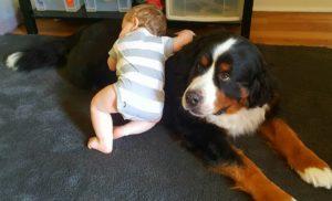 jax and baby