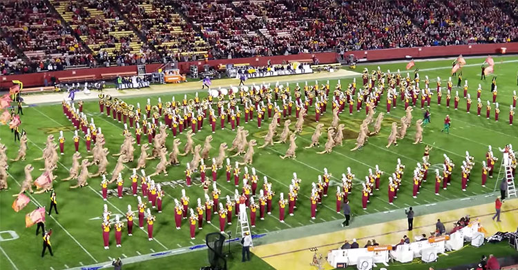 Iowa State Marching Band Plays