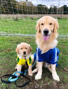 cooper murphy soccer