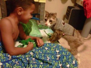 boy-playing-with-chester