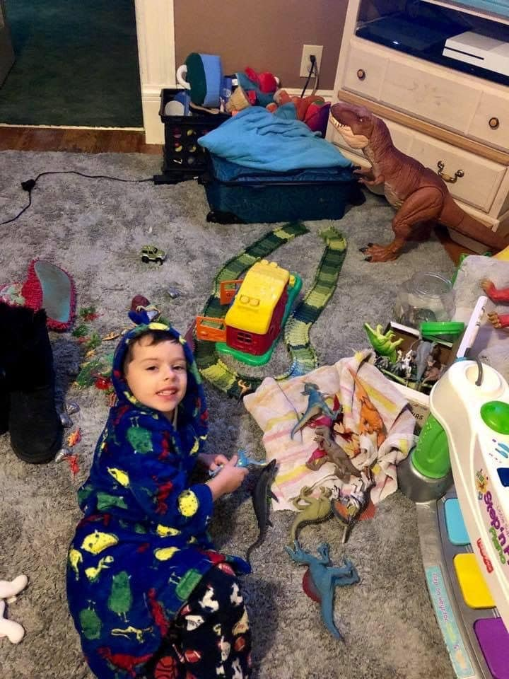 Internet Sends Toy Dinosaurs To Boy Who Lost Everything In
