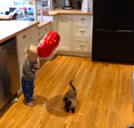 toddler and balloon