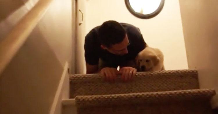 hobbs on stairs