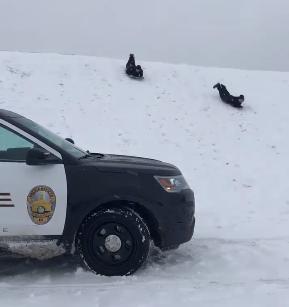 cops sled