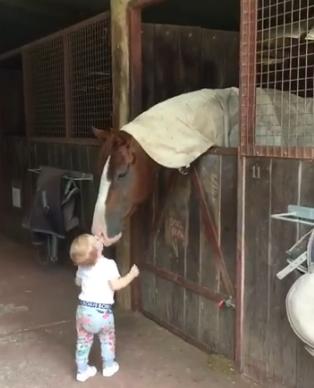 coco horse kiss