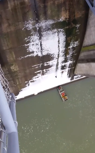 cat slides down spillway