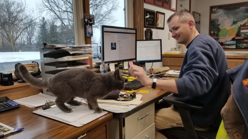 rescued cat at sheriff's department