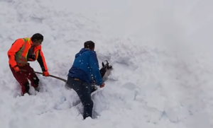 workers dig out chamois