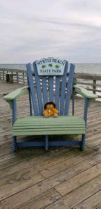 bear at myrtle beach