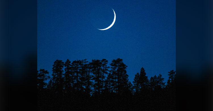 nighttime by pexels