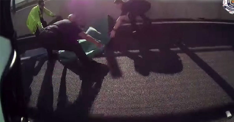 cops rescue ducks