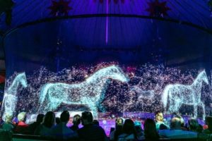 circus roncalli holographic animals
