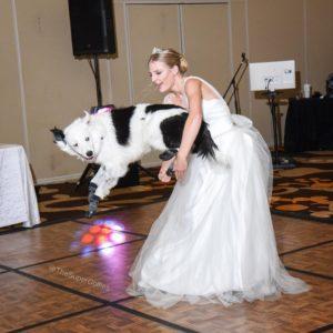 sara hero wedding first dance