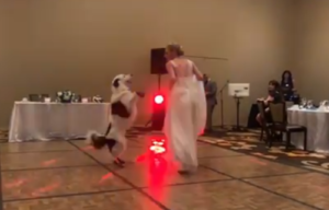 wedding first dance dog