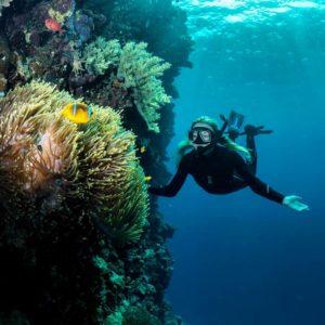 marine ecologist charlotte