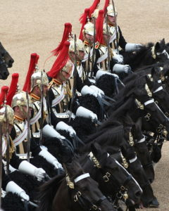 blue and royals Household Cavalry