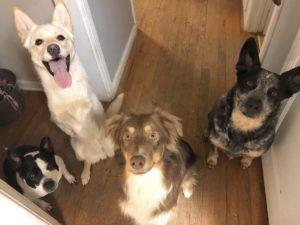 gus and his siblings