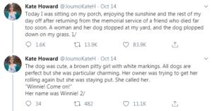 winnie tweets