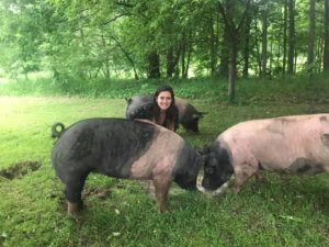 carly and pigs