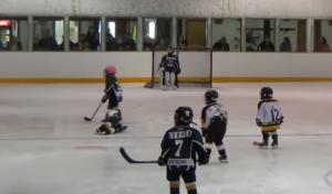 tyke hockey fall