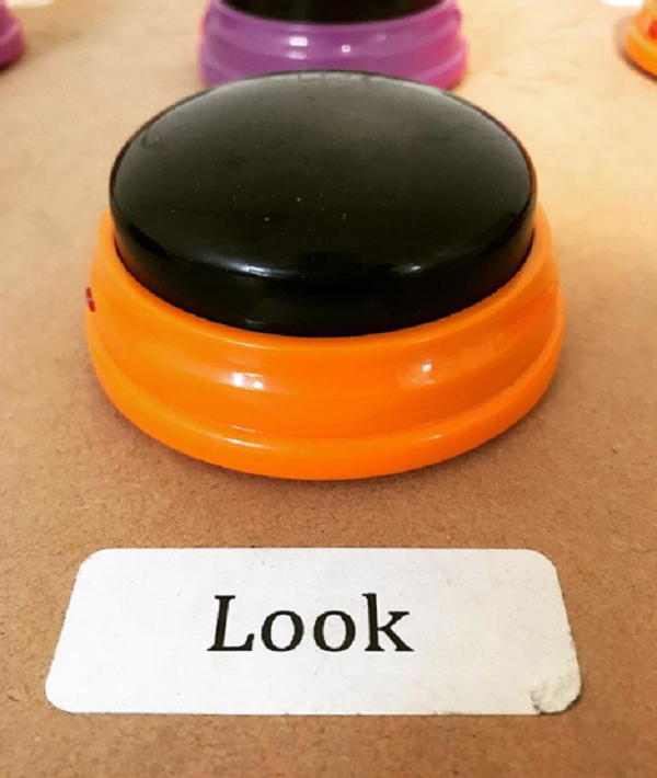 look button