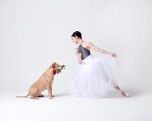 dancers and dogs photo series