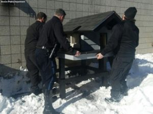 officers set up cat condo
