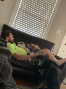 dads and dogs