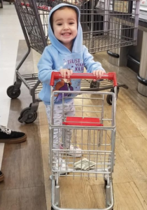 lily belle shopping cart