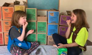 piper and julia virtual cookie booth