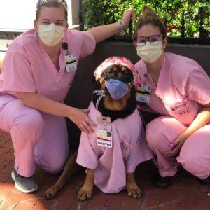 loki and nurses